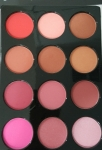 "Set blush ""G"" (blush) set 12 colors"